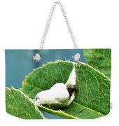 The Shy Cockatoo Weekender Tote Bag