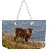 The Soay Sheep  Weekender Tote Bag
