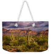 The Sonoran Golden Hour  Weekender Tote Bag