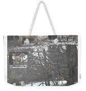 The Stallion Lives In The Country Weekender Tote Bag by Patricia Keller