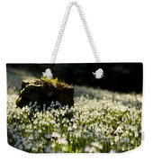 The Stump And The Snowdrops Weekender Tote Bag by Anne Gilbert