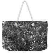The Survivor Tree In Black And White Weekender Tote Bag