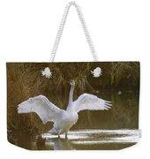 The Swan Spreads Its Wimgs Weekender Tote Bag