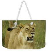 The Tail Rules Weekender Tote Bag