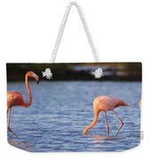 The Three Flamingos Weekender Tote Bag