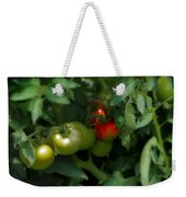 The Tomato Plant Weekender Tote Bag