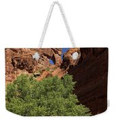 The Tree And The Window Weekender Tote Bag