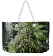 The Tree In The Forest Weekender Tote Bag