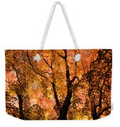 The Trees Dance As The Sun Smiles Weekender Tote Bag