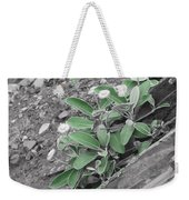 The Untouchable Plant Weekender Tote Bag