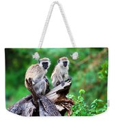 The Vervet Monkey. Lake Manyara. Tanzania. Africa Weekender Tote Bag