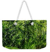 The Walls Are Alive - Seaside Abstract Weekender Tote Bag