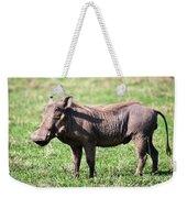 The Warthog On Savannah In The Ngorongoro Crater. Tanzania Weekender Tote Bag