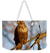 The Watcher In The Woods Weekender Tote Bag