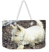 The Wheaten Pup Weekender Tote Bag