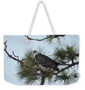 The Wild Osprey Weekender Tote Bag