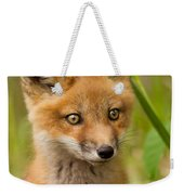 The Wild Pup Weekender Tote Bag