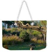 The Wildebeest Weekender Tote Bag