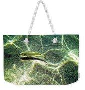 The Wishing Fish Weekender Tote Bag