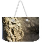 Theodore Roosevelt At Yellowstone Weekender Tote Bag