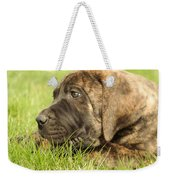 There Is Nothing Better Than A Bone And Some Warm Grass Weekender Tote Bag