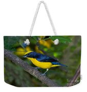 Thick-billed Euphonia Weekender Tote Bag