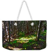 Thicket-like Woods And Spongy Moss Near Lobster Cove In Gros Mor Weekender Tote Bag