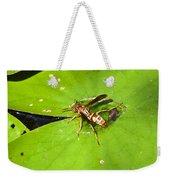 Thirsty Bee On Waterlily Weekender Tote Bag