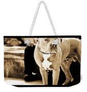 This Dog Has A Soul Weekender Tote Bag