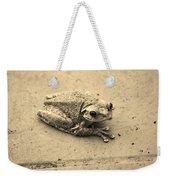 This Old Frog Weekender Tote Bag