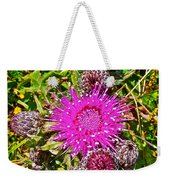 Thistle In Saint Mary's Ecological Reserve-newfoundland Weekender Tote Bag