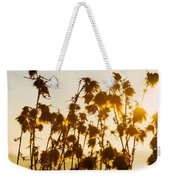 Thistles In The Sunset Weekender Tote Bag