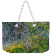 Thornton's Canvas Weekender Tote Bag by Roxy Hurtubise