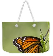 Those Magnificent Monarchs - Danaus Plexippus Weekender Tote Bag