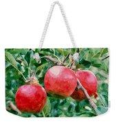 Three Apples On Tree Weekender Tote Bag