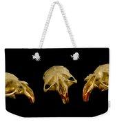Three Blind Mice Weekender Tote Bag by Jean Noren
