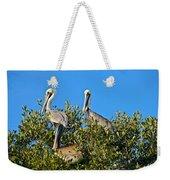 Three Brown Pelicans Weekender Tote Bag