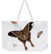 Three Butterflies And A Gnat Weekender Tote Bag