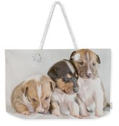 Three Collie Puppies Weekender Tote Bag by Martin Capek