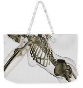 Three Dimensional View Of Female Spine Weekender Tote Bag by Stocktrek Images