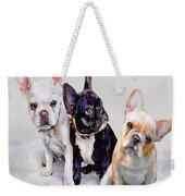 Three Frenchie Puppies Weekender Tote Bag by Jane Schnetlage