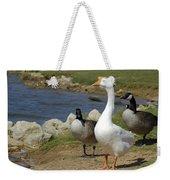 Three Geese Just Srolling Along Weekender Tote Bag