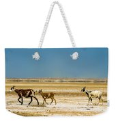 Three Goats In A Desert Weekender Tote Bag