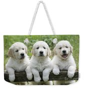 Three Golden Retriever Puppies Weekender Tote Bag