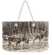 Three In The Field Weekender Tote Bag