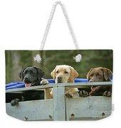 Three Kinds Of Labradors Weekender Tote Bag