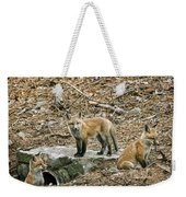 Three Kits Weekender Tote Bag