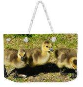 Three Little Goslings Weekender Tote Bag
