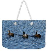 Three Mallard Ducks Weekender Tote Bag