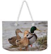 Three Mallards Card - Ducks Weekender Tote Bag